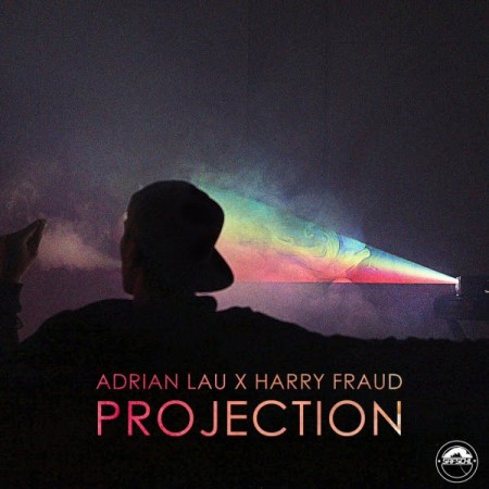 adrian-lau-harry-fraud-projection