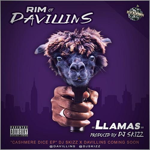 dj-skizz-rim-llamas
